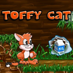 Toffy Cat